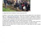 Breaking News _ Vincenzo Mercurio nuovo enologo a Contrade di Taurasi « Luciano Pignataro Wineblog 3