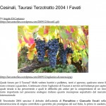 Cesinali, Taurasi Terzotratto 2004 I Favati _ L' A r c a n t e-1