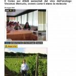 II Corso sui difetti sensoriali del vino dell'enologo Vincenzo Mercurio, ovvero come ti stano la molecola « Luciano Pignataro Wineblog1