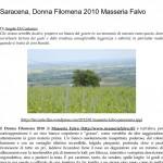 Saracena, Donna Filomena 2010 Masseria Falvo _ L' A r c a n t e-1