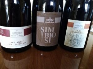 Vini-rossi-Fattoria-La-Rivolta-e1583598538692